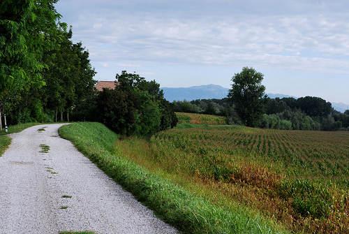 Area naturalistica del Brenta